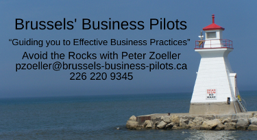 Brussel's Business Pilots